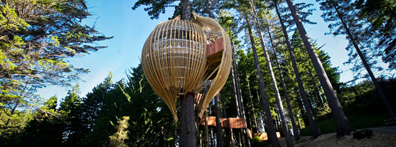 Yellow Pages Treehouse Restaurant
